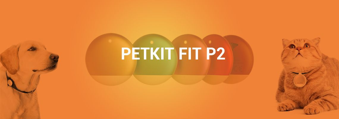 Best Pet Tracker - PETKIT FIT P2