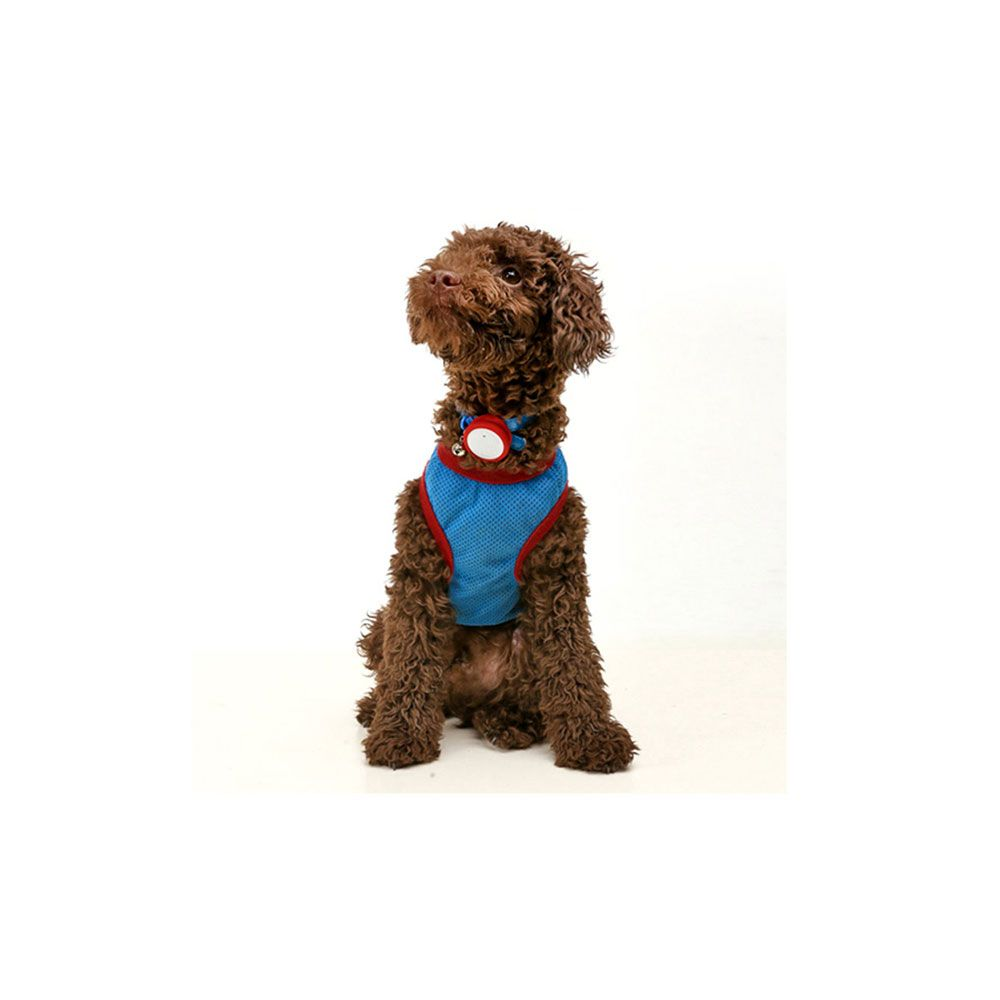 Button Smart Dog Tag - smart wearable device for your dog