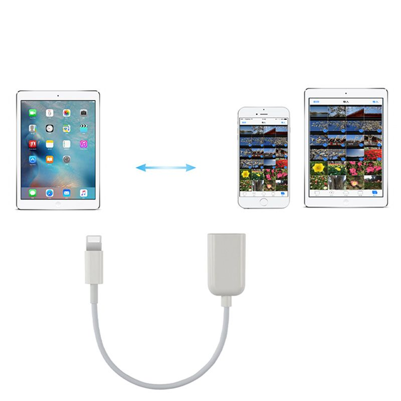 Lightning To USB OTG Adapter Cable 150mm (White)