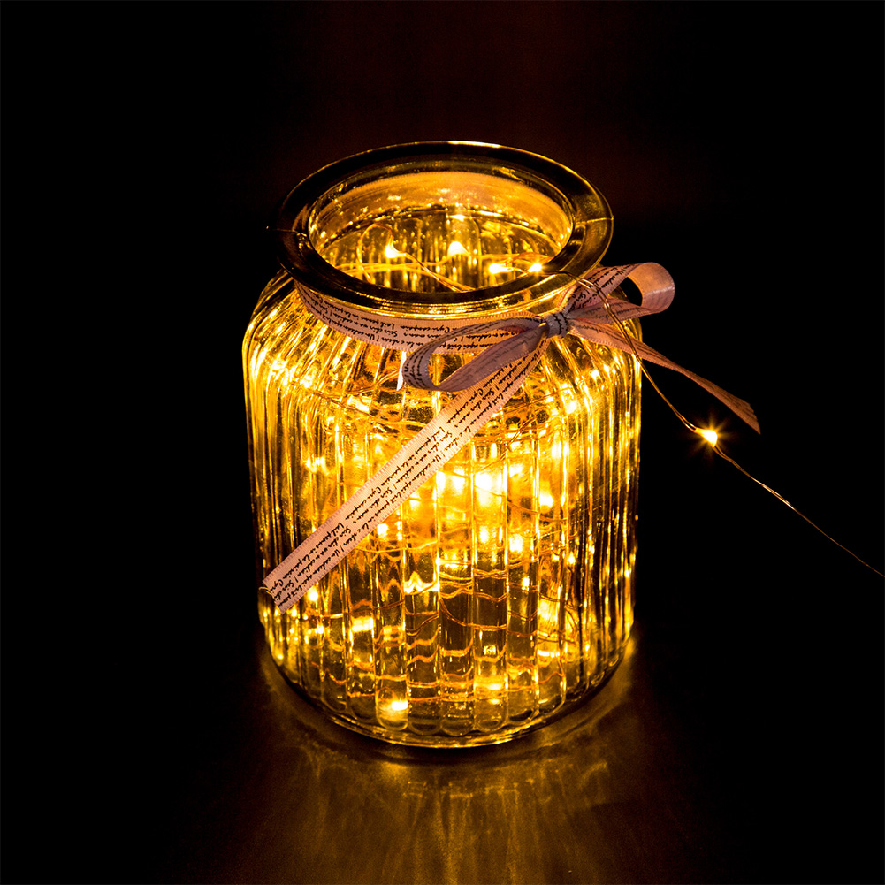 GEECR 33ft 100 LED String Lights (Warm Yellow/Colorful Light)
